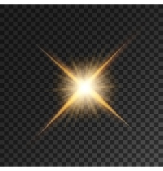 Gold bright star light flash vector image vector image