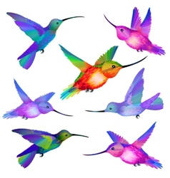 Set of isolated Humming birds vector image vector image