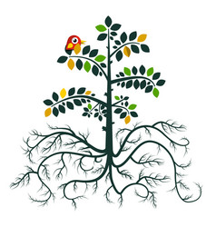 tree with roots flat design nature symbol with vector image vector image