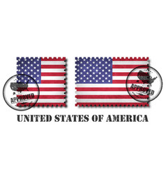 america or american flag pattern postage stamp vector image