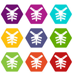 Human thorax icon set color hexahedron vector