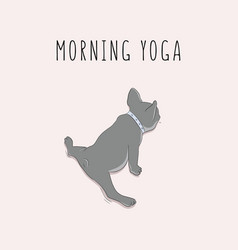 pug in split morning yoga exersises cartoon vector image