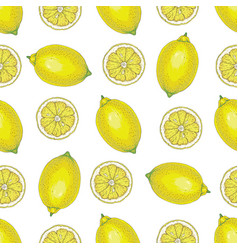 seamless pattern with whole lemons and slices vector image