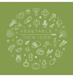 Vegetables and fruits thin icons eps10 fo vector