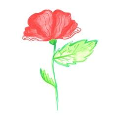Watercolor poppy vector image