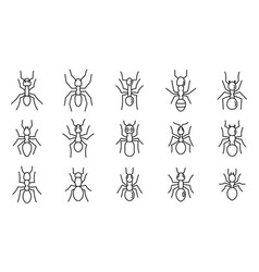 Wild ant icons set outline style vector