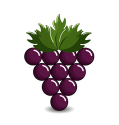 grape cluster icon image vector image vector image