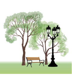bench in park with tree and streetlamp city park vector image