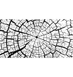 Cracked stump wood texture wood material surface vector