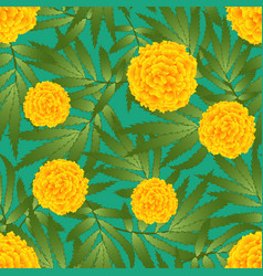 Marigold flower - tagetes on green background vector