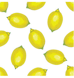 seamless pattern with whole lemons vector image