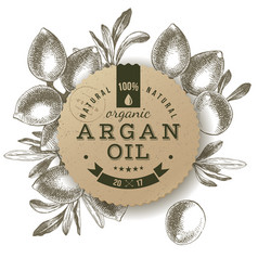 argan oil label with hand drawn nuts vector image