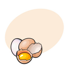 whole and cracked broken chicken egg with yolk vector image