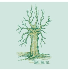 Dry tree without leaves with place for text vector image