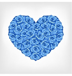 Heart of blue rose card valentine wedding day vector