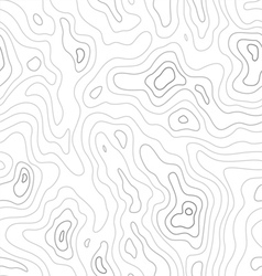 Topographic Map Pattern vector image vector image