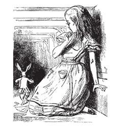 alice watches white rabbit run away vintage vector image