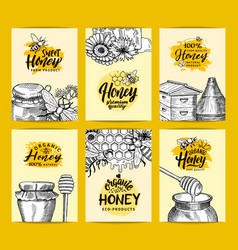 card templates set for honey shop or farm vector image