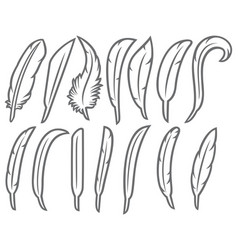 feathers thin line icons set vector image