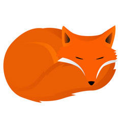 Fox curled up vector