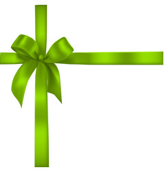 green realistic bow with ribbons vector image vector image