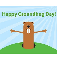groundhog day funny cartoon character marmot vector image