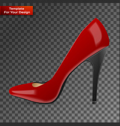 modern womens fashion shoes vector image