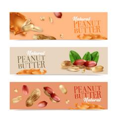 Peanut horizontal banners vector