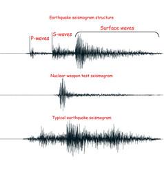 Seismogram set vector