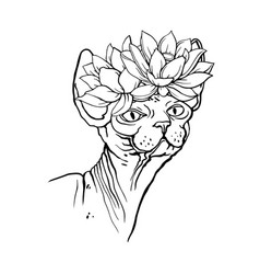Sphinx cat with flowers coloring book for adults vector