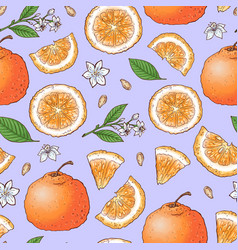 colorful mandarin fruit and citrus ice cream vector image