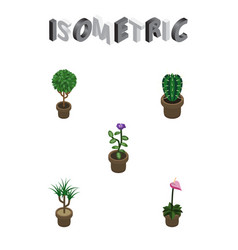 Isometric flower set of flower grower houseplant vector