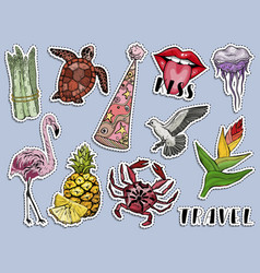 summer sticker set paradise animals and plants vector image