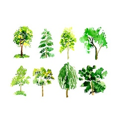 Collection of trees painted watercolor vector