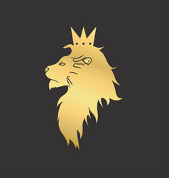 gold lion vector image