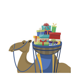 Happy epiphany day camel transporting gifts on a vector