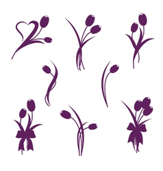 Tulip design elements vector