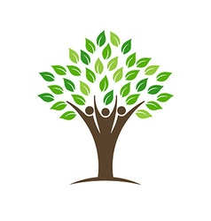 People group tree logo vector image vector image