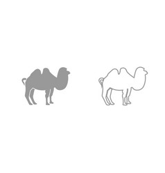 camel grey set icon vector image