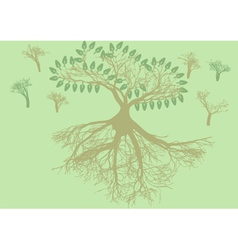 root system vector image