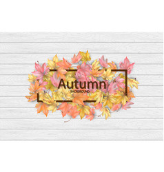 autumn frame with fallen leaves vector image
