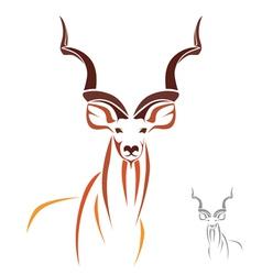 Kudu vector image