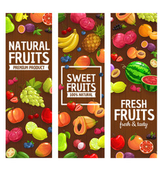 natural farm fruits and berries banners vector image