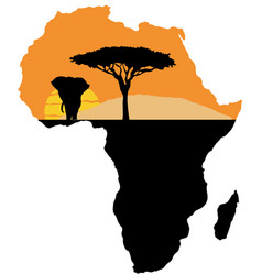 africa map vector image