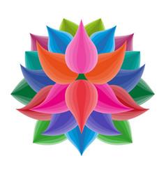beautiful lotus flower symbol colorful vector image