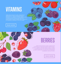natural vitamins flyers with berries vector image