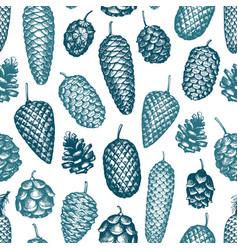 Pine cones hand drawn seamless pattern botanical vector