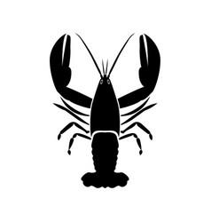 craw fish vector image