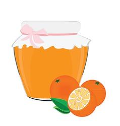 Orange jam vector image