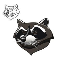 Angry cartoon raccoon mascot on white vector image vector image